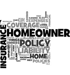Types of Homeowner's Insurance Policies
