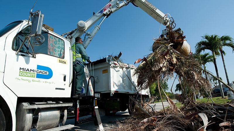FEMA Sending Almost $120 Million to Miami-Dade for Hurricane Irma Debris Removal