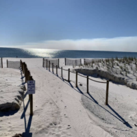 Resilience Redevelopment Plan Mexico Beach