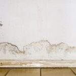 flooding-rainwater-floor-heating-systems-causing-damage-peeling-paint-mildew_132310-101